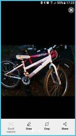 BMX bikes and Raleigh 18 gear Shimano mountain bike see pics