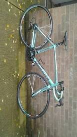 Bianchi via nerone road bike