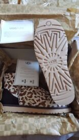 Brand new ladies limited edition ugg boots