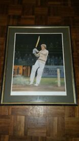 Limited Edition David Gower Print by Kevin Adams