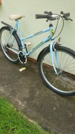 Girls / Ladies Bike