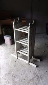 Set of folding ladders
