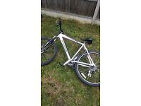 Mens Diamond Back Mountain Bike £35