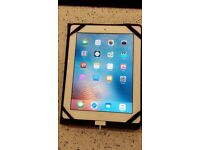 Apple iPad 2 with case