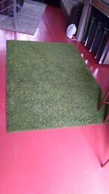 Green Shag Rug - 200cm x 130cm