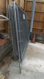 12 Heras fencing panels with feet and clips