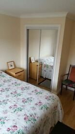 Double room available in west end