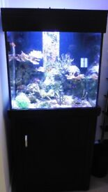 aqua one marine fish tank. 68x68 156cm 275ltrs. excellent condition