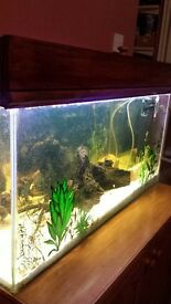 125l fish tank. £100