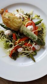 Experienced Chef De Partie Required for Fitzrovia Pub
