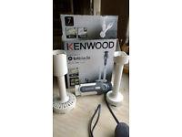 Kenwood HDP300 Hand blender