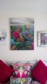 Pictures/canvases