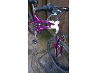 womans or girls mountain bikes and cycle 24inch wheels 22 inch wheels