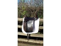 "DRESSAGE SADDLE - ALBION 17.5"" MEDIUM FIT BROWN"