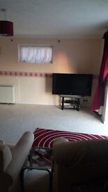 Room in Lovely 2 Bed Flat