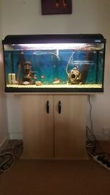 120ltr tropical fish tank