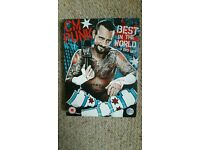 WWE dvd: CM Punk - best in the world.
