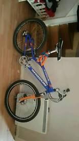Shogun Cygnus bicycle