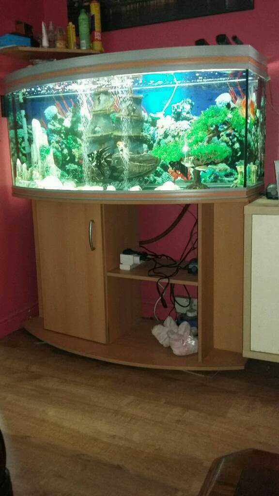350L fish tank with stand.
