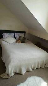 Double bed room up for rent