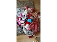 Bunde of baby girls clothes 0-6