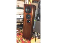 Castle Severn Speakers + Grills and badges
