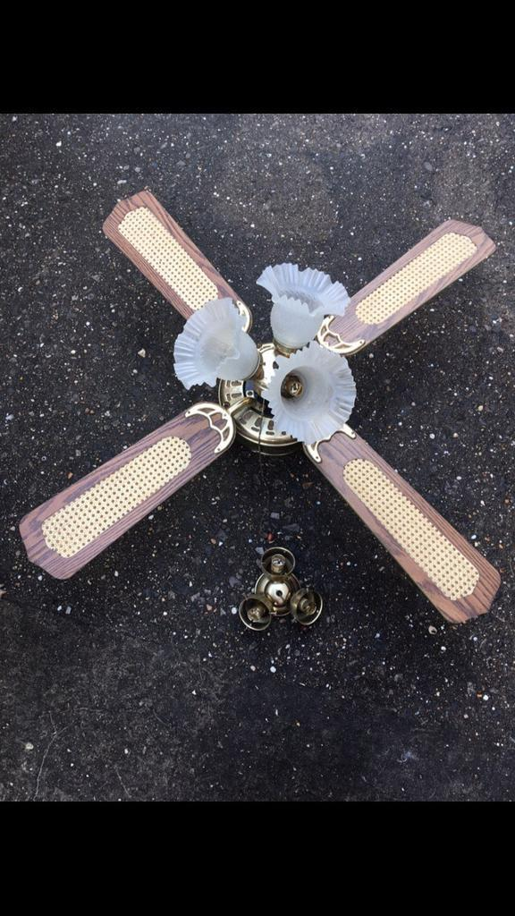Conservatory Ceiling Fan Light Extra
