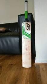 Cricket bat (sh)