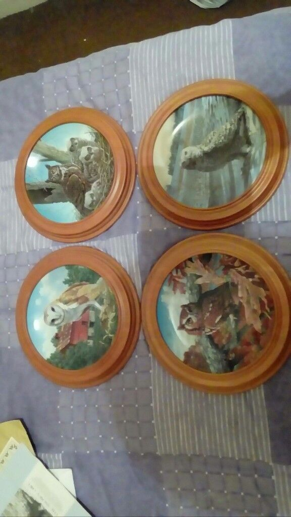 Collectable owl plates