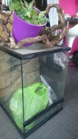 Vivarium, complete with thermastat, heat and uv lamp and all accessories