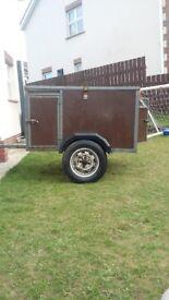 dog trailer springer terrier labadoor lurcher