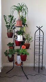 7/11/13 Tier Metal Plant Stand Flower Pot