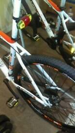 29er bike.