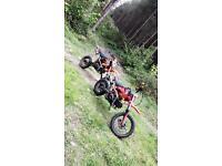 Lifan 2016 125cc pitbike