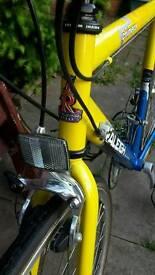 Road bike Raleigh
