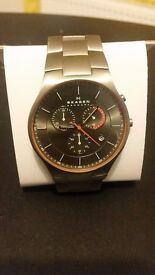 Skagen Men Titanium Watch