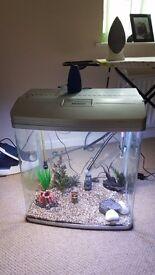 Fish tank aquarium complete setup