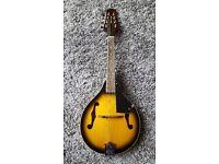 Mandolin, flat-backed, 'Vintage Sunburst', with Stagg gig-bag, excellent condition