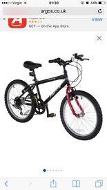 Boys 20inch mountain bike