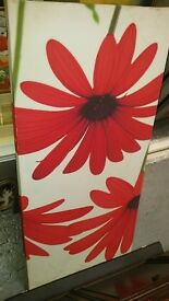 Poppy Canvas Picture