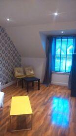 Top Floor 1 bedroom flat (recently refurbished)