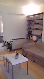 Available ASAP : Huge and lovely 1 bedroom in Holborn