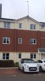 Lovely 2 Bed roomed property to rent (Regency Apartments Killingworth)