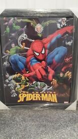 Spiderman framed picture