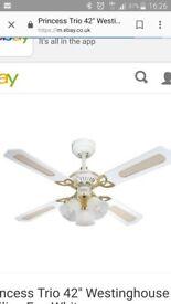 White/gold fan light