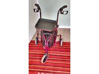 Kona Tri Walker Mobility Aid