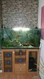 Fantastic 345L Fish Tank with all accessories including fish and stand