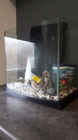 Small rectangle fish tank