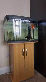 Aquarium Panorama 64l with Cabinet