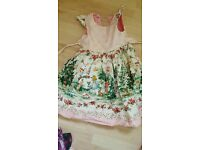 Handmade Alice In Wonderland dress